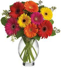 karangan bunga vas garbera zaenflorist code Zn 11